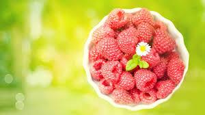 25 fruit wallpaper hd for