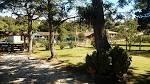 imagem de Balsa Nova Paraná n-18