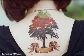 татуировка дерево на шее эскизы татуировок