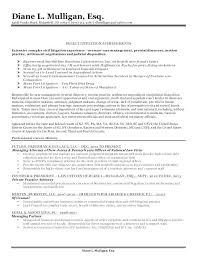 Bunch Ideas Of Civil Law Attorney Resume Best Civil Lawyer Sample