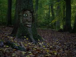 Bildergebnis für Waldgeister