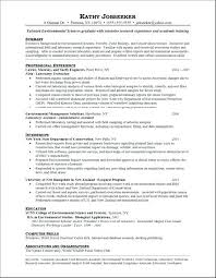 Resume For A Business Analyst Business Analytics Resume Sample Best Business Analyst Resumes