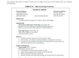 Resume Mission Statement Impressive General Resume Objective Statement Sample Job Objectives Examples