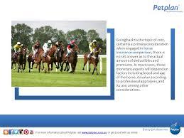 equine insurance quotes 44billionlater equine insurance quotes nfu 44billionlater