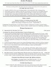 Resume For Accountant Template