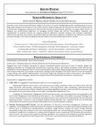 Resume Examples Business Analyst Business Analysis Report Sample Or ...