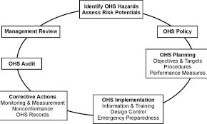 4 ohs issues in business plan