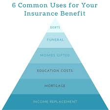 whole life insurance quotes plus life insurance term life insurance whole life insurance universal life insurance whole life insurance quotes
