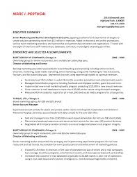 How To Write Resume Summary Trendy Examples Writing Cv Ideas It