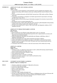 Assistant Auditor Resume Samples Velvet Jobs