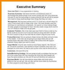 Format For An Executive Summary Sample Executive Summary It Example Format For Internship
