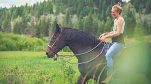 Whole Horse | Horse medicine and building bridges with Hillary Schneider -  YouTube