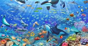 ocean wallpaper nawpic
