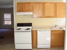 Apt Kitchen 1008 Oakland Ann Arbor Michigan