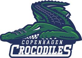 crocodile logos - Google Search | 平面设计 | Pinterest | Logos ...