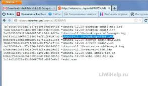 Как определить и сравнить хеш сумму файла Отображение название файла и его контрольной суммы