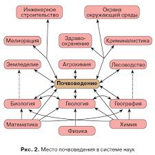 Реферат Почва как важнейшая составляющая часть биосферы 1 2 Теоретические представления о почвах