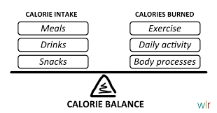 Daily Calorie Chart For Weight Loss Daily Calorie Intake Weight Loss Resources