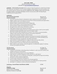 Counselor Job Description For Resume After School Counselor Job Description For Resume Best Of School 14
