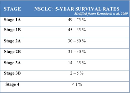 Stage 4 Lung Cancer Survival Rate Non Small Cell Lung Cancer Staging The Numbered Staging Moose And Doc
