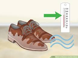 image titled maintain leather shoes step 4
