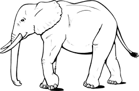 Small Picture Elephant Coloring Pages In Printable glumme