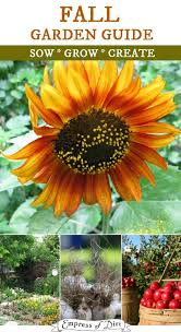 Touch Of November Next Week Timely Fall Gardening Tips Fall Gardening