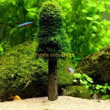 10pcs lot small diy aquarium decoration biological filte simulation moss ball holder tree live