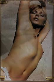 Original Vintage Poster Beach Babe Naked Woman 1970s Headshop Sexy Pinup Lady