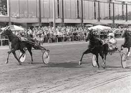 Breeders Crown / Bedeutende Rennen / Siegerlisten / Startseite - Trab Hall  of Fame