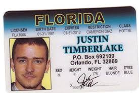 Fake Identification Network I Social Drivers amp; Fans Novelty For Timberlake The License com Justin Orlando d Games Amazon Toys Florida