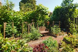 backyard garden. Here Is A Lovely Vegetable Garden With Seat For Resting After Long Day Tending Backyard
