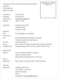 Resume Samples For Free Resume Examples Free Senior Executive Resume