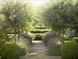 Small Picture Garden Designer Visit Lavender Fields in Australia Fudge
