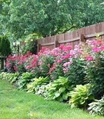 landscape fence ideas awesome fence landscaping ideas knockout roses and  planted along fence landscaping landscape design . landscape fence ideas ...