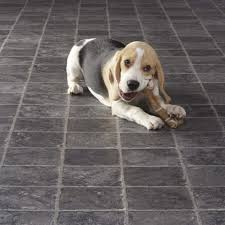 most durable flooring with dogs cleaning dog urine from hardwood