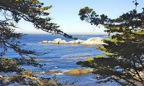 get out and enjoy nature point lobos state reserve visitor information maps directions