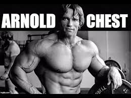arnold schwarzenegger s full beast chest workout for maximum gains
