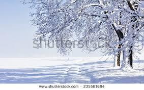 descriptive essay on a cold winter morning descriptive essay of a winter morning help