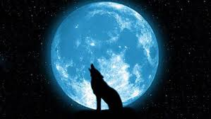 wolf howling wallpaper desktop. Wolf Howling On The Moon HD Wallpaper Desktop Background And