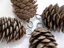 Pine Cone Christmas Decorations How To Hang Pine Cones To Insert An Eyelet Drill A Tiny Hole