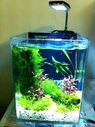 large size of desk fish tank office best aquarium ponds terrariums images on ideas and for