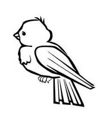 bird coloring pages bing images