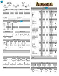 character sheet pathfinder pathfinder character sheet