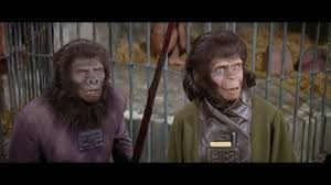 you ve e a long way baby the apes back in 1968