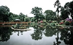 Japanese Garden Theme Other Wroclaw Japanese Garden Alien Beautiful Reflection Lake