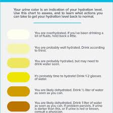 Hydration Color Chart Hydration How Much Water Is Necessary For Daily Hydration