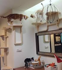 Wall mounted cat tree thor scandicat Shelf Fullsize Of Adorable Wall Mount Ikea Cat Furniture Wall Mount Ikea Cat Furniture Furniture Ideas Ikea Mzchampagneinfo Breathtaking Climbing Cats Your Cat Wants To Basics Cat Tree Your