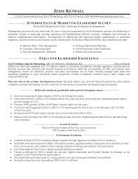 Resume Examples  Superior Sales Marketing Leader Resume Sample With Cpabilities In Operational Planning And Executive