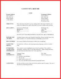 Layout Of A Good Resume Resume The Best Good Resume Layout Example